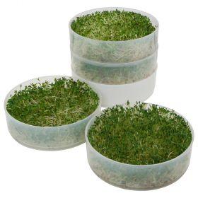 Kitchen Crop 4-Tray Sprouter